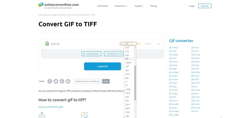 choose TIFF file extension-Onlineconvertfree