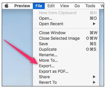click export option