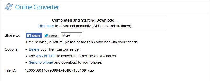 downloaded after converting-Online Converter