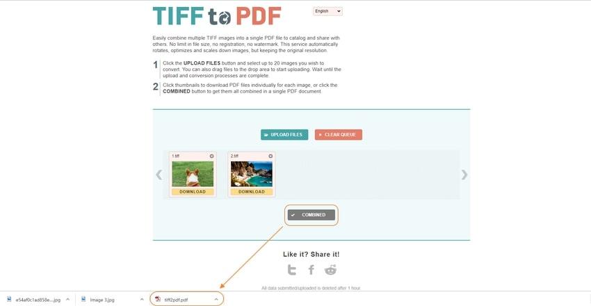Combine the TIFF Formats