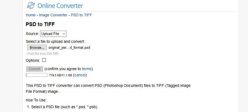 click convert button-Online Converter