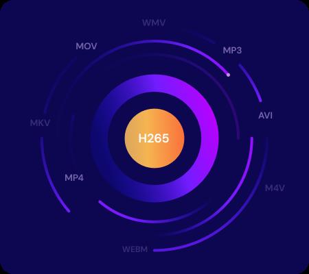 convertidor h265